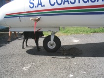040112-AVIATEUR-GUADELOUPE-OUTDOOR-TDM-1